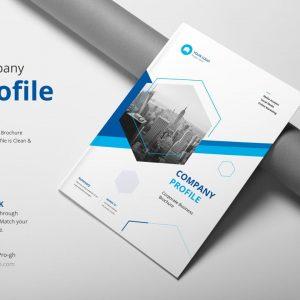 Company Profile – Free template
